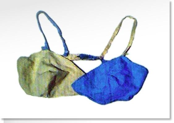 Barbara Anslow's scout tie bra