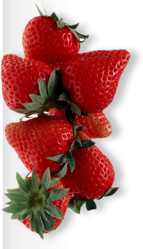 Strawberries for making Jam