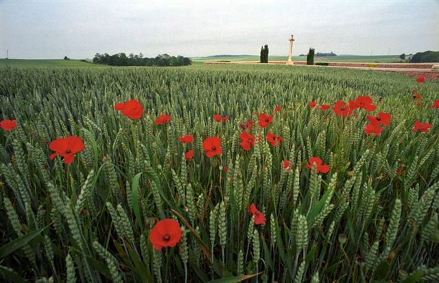 RANCOURT CEMETERY AND POPPIES, SOMME, FRANCE.EUROPE. THE WW1-1914-1918 CEMETERIES AND MEMORIALS MAINTAINED BY THE COMMONWEALTH WAR GRAVES COMMISSION. COPYRIGHT PHOTOGRAPH BY BRIAN HARRIS © 2006 0044(0)7808-579804-brianharrisphoto@ntlworld.com OR brian@brianharrisphotographer.co.uk